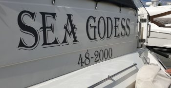 48′ Sea Godess Lawrence 113
