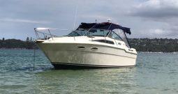 30′ Searay 300